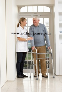 a-1 home care in home handicap care